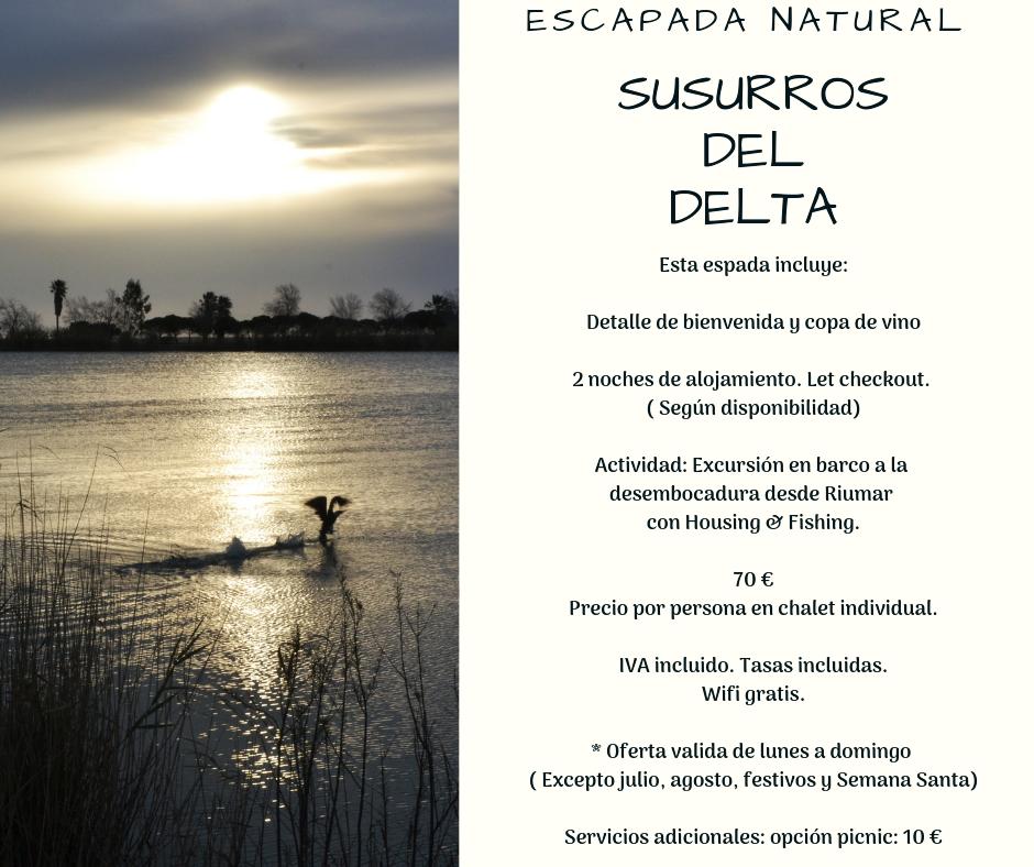 SUSURROS DEL DELTA  BOCETO 1